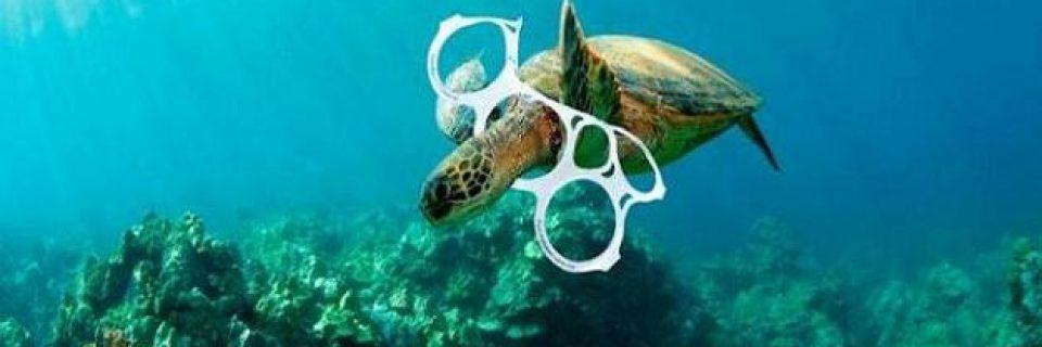Tortugas con plástico